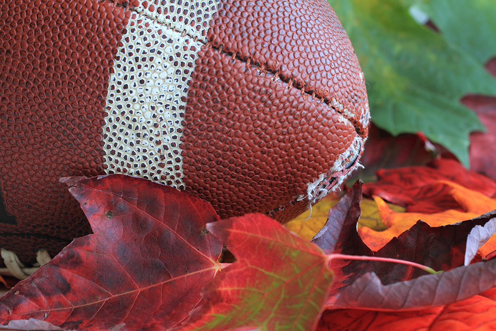 Football in autumn leaves