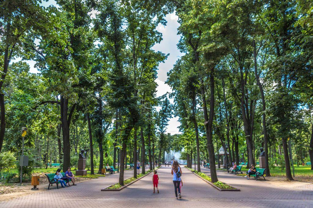 park planning